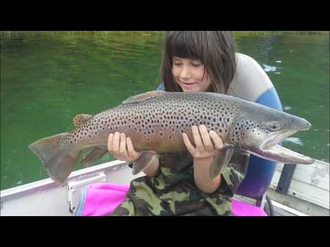 Monster Brown Trout, Alberta, Catch And Release, Fishinggeeks
