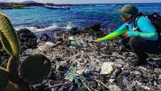 "Folgen des Plastikmülls: Verschmutztes ""Paradies"" der Galápagos-Inseln"