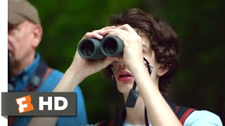 A Birder's Guide to Everything (2013) - David's Duck Scene (9/10) | Movieclips thumbnail