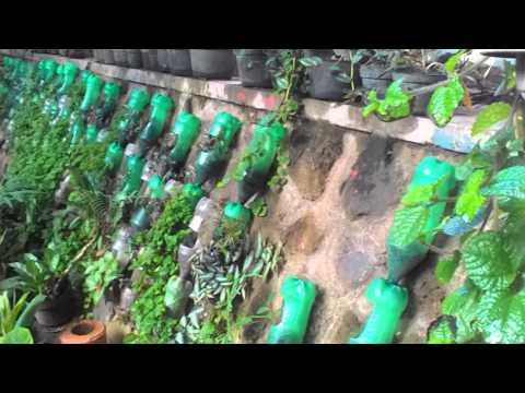 Taman Sekolah Yang Asri Dan Hijau Di Smkn 1 Glagah Banyuwangi
