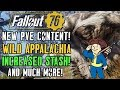 Fallout 76   NEW PVE CONTENT! Wild Appalachia! Increased Stash & More! #Fallout76