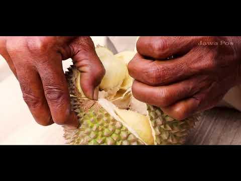 Jawa Pos Belah Durian Edisi 2: Durian Bido Jombang