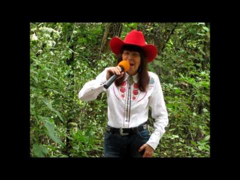 Highway Robbery/Tanya Tucker - Vocal Cover By Diana Lynn Howard