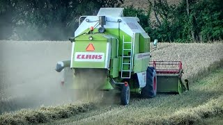 ☆ Żniwa 2018 ☆ & Claas Dominator 98 & Valtra A 93 & Case RB 344 ㋡