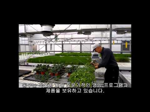 동부팜한농 관주용 비료 에코솔 Dongbu Farm Hannong WSF Eco-sol