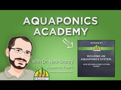 Aquaponics Academy #11: How Do Media-Free Systems Work?