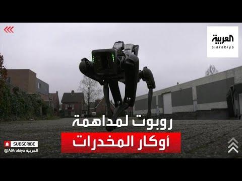 روبوت مخصص لمداهمة أوكار تجار المخدرات  - نشر قبل 4 ساعة