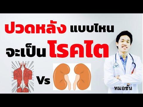 ปวดหลัง ปวดเอว แบบไหน สงสัยว่าเป็น โรคไต กรวยไตอักเสบ ไตอักเสบ /หมอซัน หมอฝังเข็ม