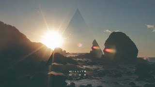 Christopher Willits - WIDE
