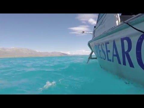 Lake Tekapo – A tsunami hazard?