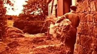 1940s stock footage - from flax to linen