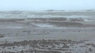 昨日の台風波