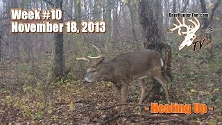 Big Bucks While Bow Hunting