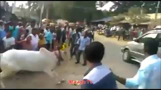 It Happens Only In India Part 3 Feb 2018 II Most Insane Videos
