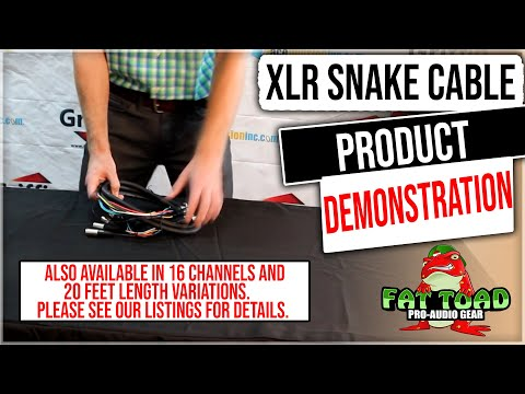 Fat Toad XLR Snake Cable Pro Audio Patch Product Review and Demonstration Model APS2442