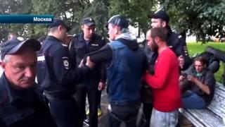 Активисты 'Лев против' остановили 'массовый запой' в парке в центре Москвы