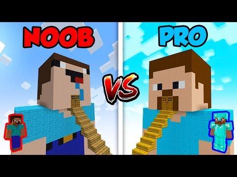 Minecraft NOOB vs. PRO: NOOB HOUSE vs. PRO HOUSE!   AVM Shorts Animation
