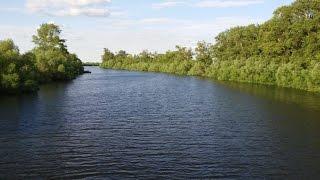 Река Карасу летом (Карасуский район) 7 июня 2015