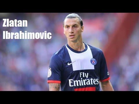 Zlatan Ibrahimovic ► The Monster | 2013-2014 |
