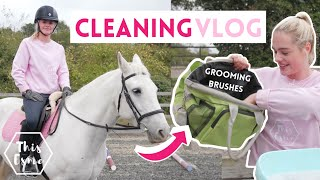 Cleaning Grooming Brushes, Joey Lesson + Mickeys lost Flymask! AD | This Esme