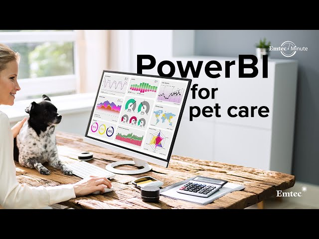 Power BI Solution for Pet Care Service Provider | Emtec Digital