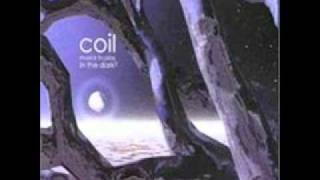 Coil - Tiny Golden Books