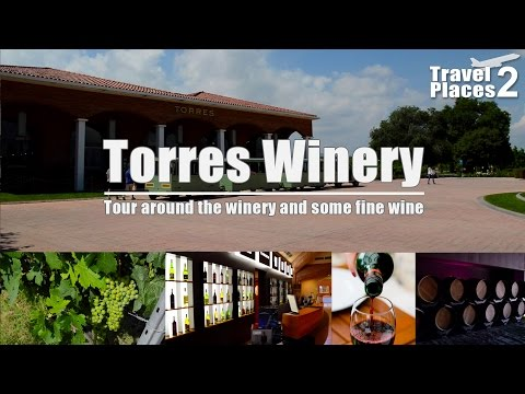 Tour around Torres winery a bit outside Barcelona
