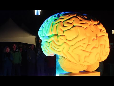 Brain Sculpture Lighting Ceremony at IU Bloomington