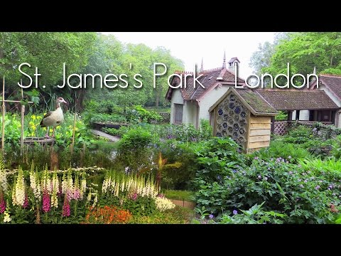 St  James's Park - London