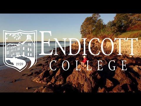 Be an Endicott College Gull