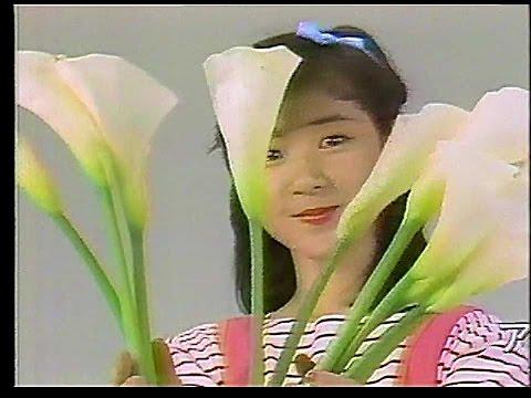 CM 徳間ジャパン アニメージュレコード 1984年