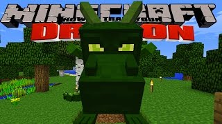 Minecraft - HOW TO TRAIN YOUR DRAGON - Our Dragons Grow Up [3]