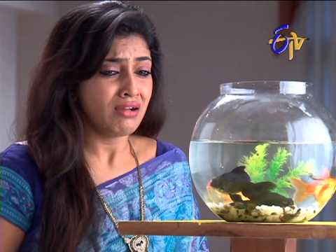 Bharyamani On 19th November 2012 - Episode No 1118