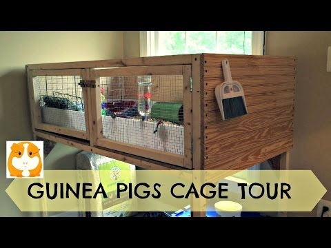 The Guinea Pigs Cage Tour -May 2014 (old)