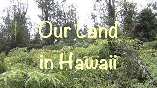 Hawaii - Checking out Our Land