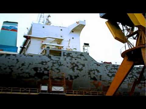 Maritime transport - Ocean Report