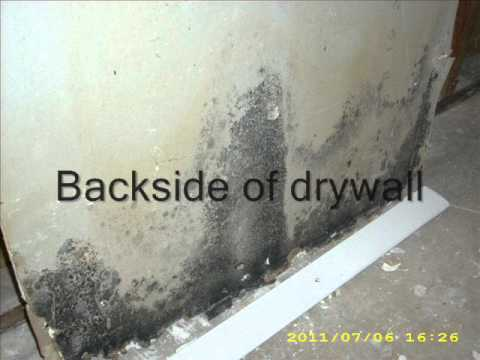 Black Mold In Walls drywall tips - preventing black mold - youtube