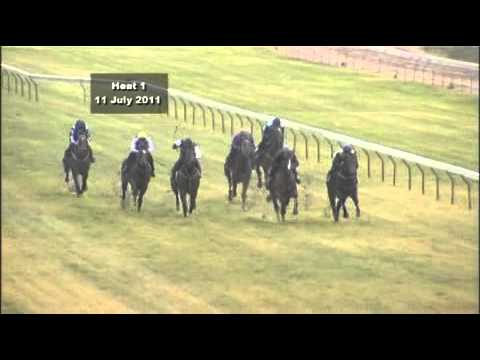 Perth Racing - The Western Australian Turf Club : Race Results And Replays