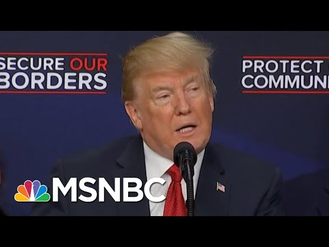 Fact Check: Crime Rates Have Declined While Immigration Population Has Increased | MTP Daily | MSNBC