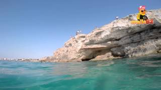 Abtauchen und Klippenspringer auf Mallorca