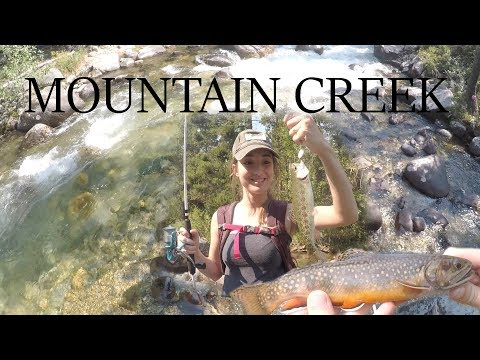 Wild Brook Trout - In Beartooth Mountains Creek! (Fishing Montana)