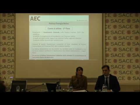 "Workshop ""Energy Saving Companies ESCO"" a cura di AEC"