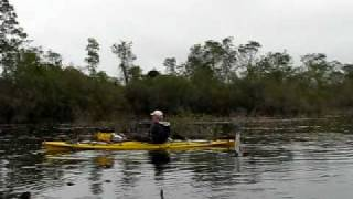Wrong-Way Steve and Linda canoe in the Okefenokee Swamp