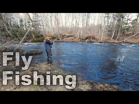 Fly Fishing- Day 15 of 30 Day Survival Challenge Maine Lockdown