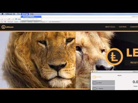 HOW TO SET UP A LEO COIN WALLET