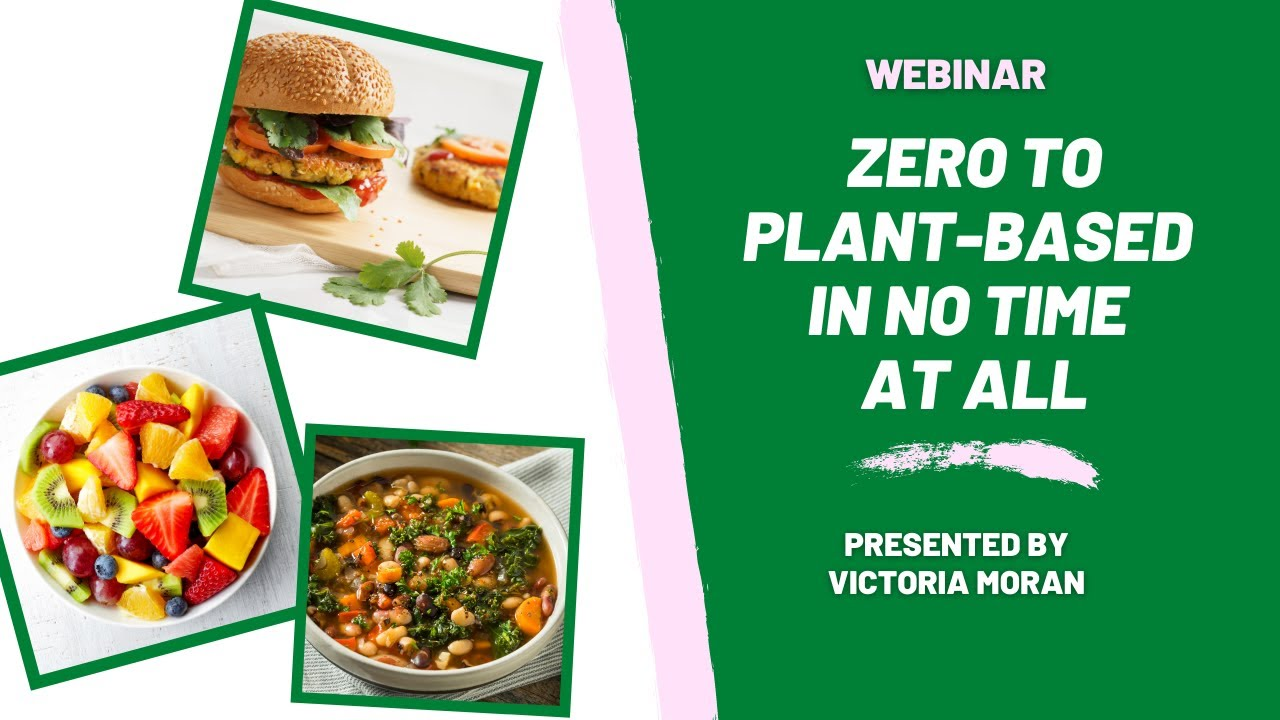 Download Zero to Plant-Based in No Time At All