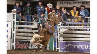 Pro Bull Riders Out of the Chute PC
