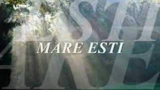 Vasile Micula - Cat de mare esti Doamne