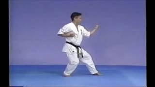 極真空手の型「太極Ⅲ」です。 KyokushinKata Taikyoku3.