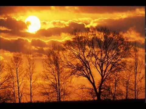 Orange Sky - Alexi Murdoch